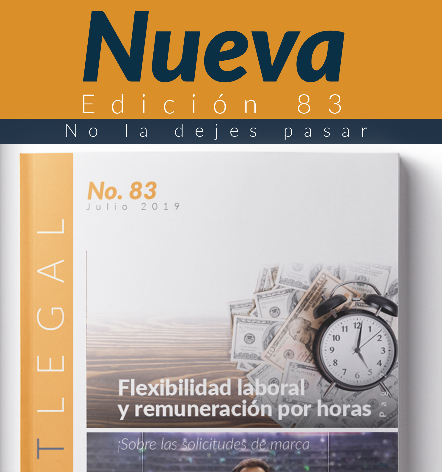 Edición Notinet legal No. 83 -Julio -2019